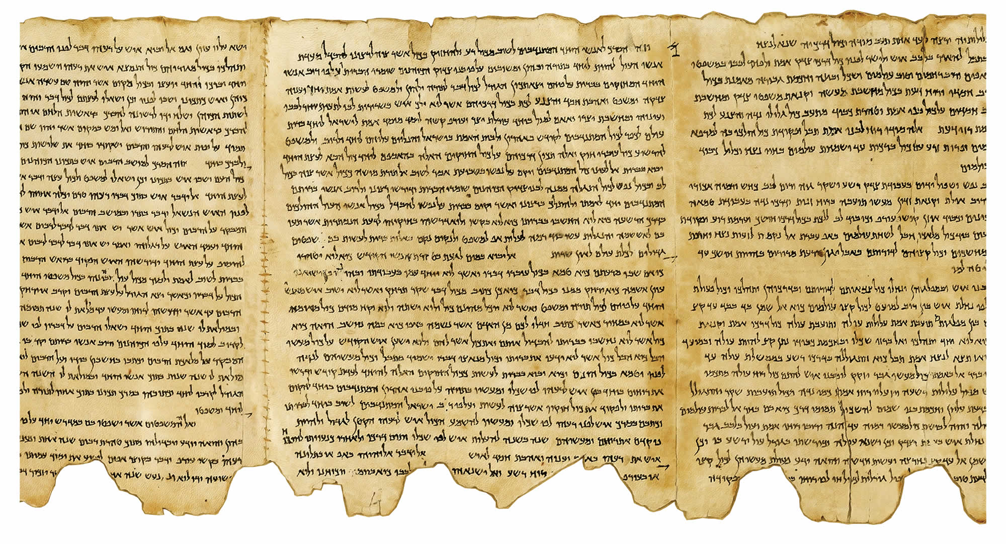 Fragments from The Dead Sea Scrolls found in caves near Khirbet Qumran, on the north western shores of the Dead Sea. Some 2000 years old, most were written in Hebrew on parchment, with a smaller number in Aramaic or Greek.